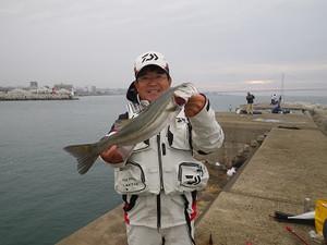 111030matuosuzuki